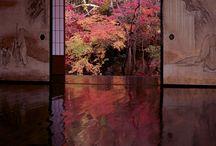 Interior Japanese modern