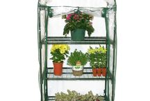 Greenhouses / Backyard greenhouses, from small 3-tier to 10 X20 ft. walk-ins.