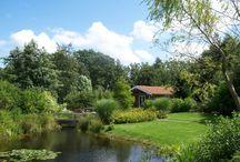 """Gastenverblijf Klein Eden /  Op een unieke locatie in de Friese Wouden -even weg van alle drukte- vind je het bijzondere gastenverblijf """"Klein Eden"""", voor 2 personen. Rustig en landelijk gelegen, nabij de mooie bossen van Beetsterzwaag en Olterterp, op de grens met Groningen en Drenthe.  Als onze enige gast, (wij hebben maar 1 huisje) heb je een prachtige privé tuin van 2.700 m² met siervijver. Het gastenverblijf is romantisch ingericht en van alle gemakken voorzien."""