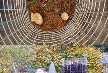 uzitkova zahrada