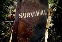 PREPPING: Man-made Disasters / Nuclear events, economic collapse, terrorism, pandemics, and more -- prepare for these events and get tips for surviving them. www.TheSurvivalMom.com / by The Survival Mom