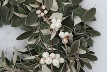 Winter Decor / Post-holiday prettiness / by Andreia Ransdell