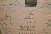 Winter Classroom Ideas