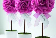 Boda! / ideas, decoracion, todo para una boda economica!