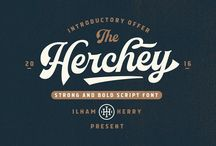 Gorgeous Script Fonts / A collection of well-designed #ScriptFonts found around the web.