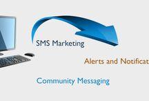 Bulk SMS in Mumbai - Daksh SMS