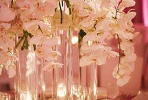 Wedding Ideas / by Allie Simmons