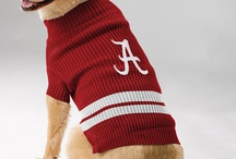 Furry Fans - Team Gear for Pets