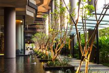 Arquitectura y naturaleza