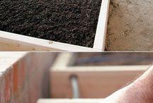 Grădină vegetală