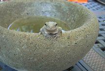 concrete bowls , planters