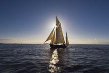 ⭐ Sail Away ⛵ ⭐