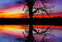 Simetrías / Simetrías  en la naturaleza y en los paisajes