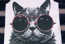 Kitty Shenanigans / Meow meow meow