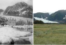 Príroda: Dopady globálneho otepľovania