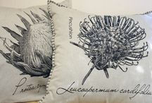 Scatter Cushions / 60X60 Woven scatter cushions with botanical theme from YilaSophia