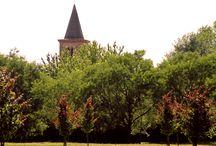 Parco Monluè, Milano / Eccovi un parco milanese che non tutti conoscono… non è lontanissimo dal centro ma è forse in una posizione per la quale passa spesso inosservato.