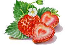 Marjat, hedelmät ja sienet