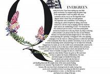 typografica
