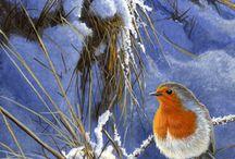 Robins Art / by Berat Demirkol