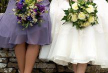Wedding Photos / by Nicole Armstrong