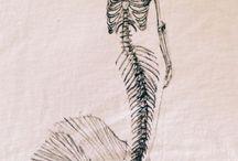 Meerjungfrau Pinacolada
