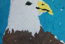 Wildlife Adventures: Bald Eagle