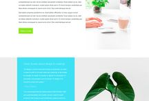 HTML/CSS themes(templates) - One Page Sites