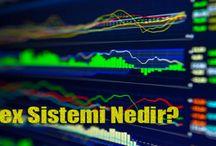 Finans / Borsa, altın, döviz, petrol, bankacılık ile ilgili finans haberleri.