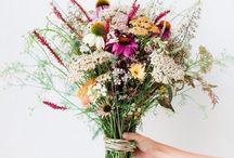 Kert és virágok