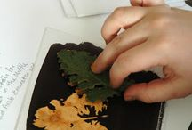 Bleach Leaves