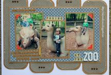 Zoo Scrapbooking / by Theresa Beckwith