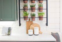 キッチン観葉植物