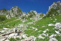 登山/Trail