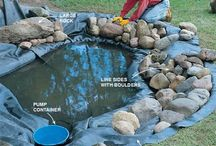 Home Projects / Aquaponics and gardening projects