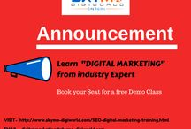 Digital Marketing/SEO Training