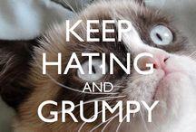 I Lurve Grumpy Cat :0)