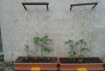 podpera na rajcata / Podpera na rajcata