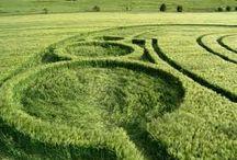 Circles. Spheres. Labyrinths. Spirals. Crop Circles.