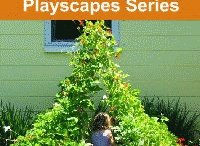 Amy & Kids Co - outdoor learning / Wishes and dreams for our outdoor learning environment / by Amy Nogar - My Happy Crazy Life