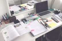 STUDY / ORGANIZATION