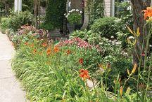 Jardin / Jardin d'agrément
