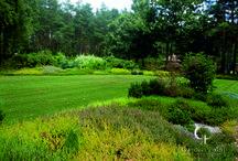 Ogród krajobrazowy w okolicach Biłgoraja
