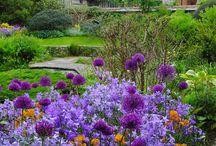 Garden / gardening, outdoor living, flowers, ponds,