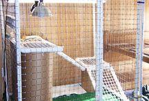 Reptile cage