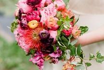 Bouquets and Boutonnières / by Jana Bickham