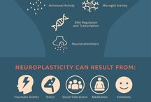 Neuroplasticity & Mindset