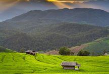 Discover Can Tho / Ontdek de mooie omgeving van Can Tho en neem een kijkje in het leven van de bewoners. #3MTT #NTV