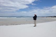 Beautiful Beaches of Tasmania