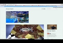 HowToTutorialsTumblrBlog / #GeorgeOgden Here are step by step instructions, Videos and Tips from the Pros to help you out. These set of tutorials can help you understand how to use the fun, powerful features of Tumblr and other apps. #LOVE My Facebook page: https://www.facebook.com/IncrediblePix  #HowToTutorialsTumblrBlog